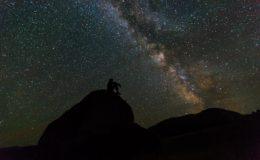Estrellas Meteoros